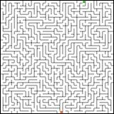 Vector illustration of perfect maze