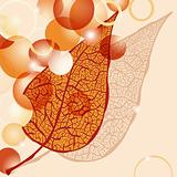 vector autumn leaf and bright balls