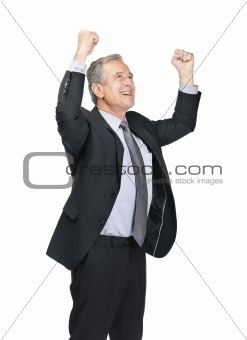 Mature male entrepreneur celebrating