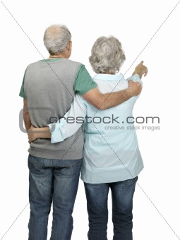 Rear view of senior woman pointing at something