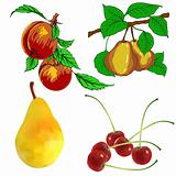 set of pear fruits cherry and peach