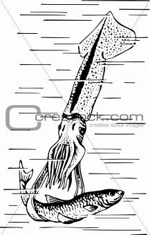 Cuttlefish hunting