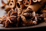 Star aniseed and cinnamon sticks