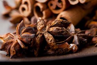 Star aniseed and cinnamon sticks