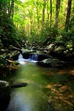 Cascading stream in smokey mountains