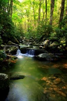 Cascading stream in smokey mountains