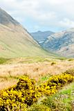 Glenshiel, Highlands, Scotland