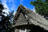 House whose roof were maded from reed