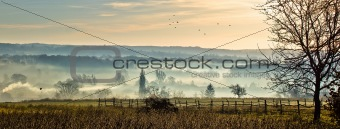 Sleepy hollow - mystical valley in fog