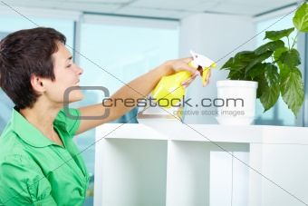 Spraying plant
