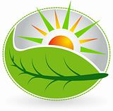 summer leaf logo