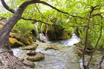 Small river, Plitvicka Lake - Croatia