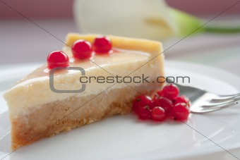 Cheese cake with cranberries