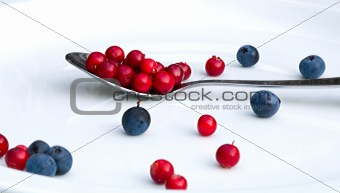 A plate with cranberries and blue berries
