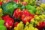 Floral bakground