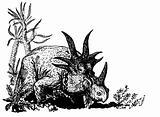 Dino Styracosaurus