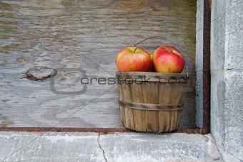 apples in old basket