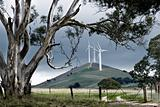 Australian Windfarm