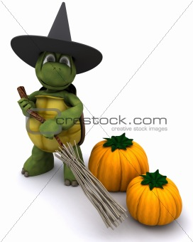 tortoise dressed as a witch for halloween