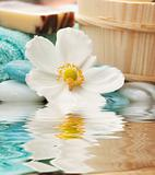 Spa setting with flower and blue candle