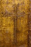 Golden plated church door
