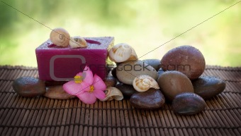 Spa setting with stones and shells