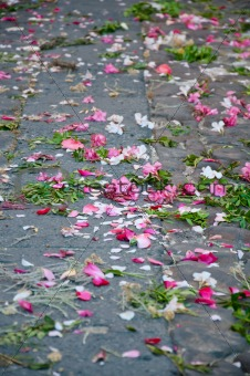 Cut flowers on the street
