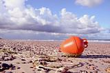 orange buoy on the sea beach