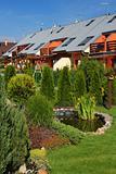 Zen coniferous garden