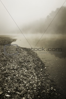 Foggy River Bottom