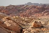 Rainbow Vista, Valley of Fire