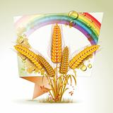 Background with wheat ears