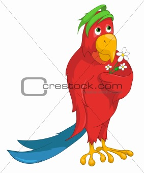 Cartoons_0058_Parrot_Vector