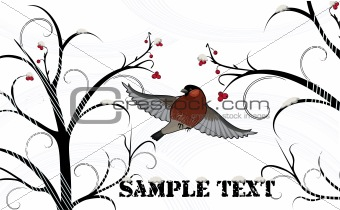 Winter background with bullfinch and ash