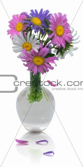 Beautiful bouquet of asters in vase with falling petals