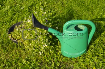 Green watering can.