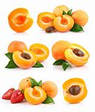 set apricot fruits with green leaf