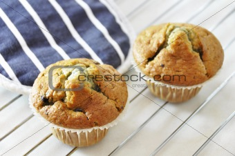 Two blueberry muffins