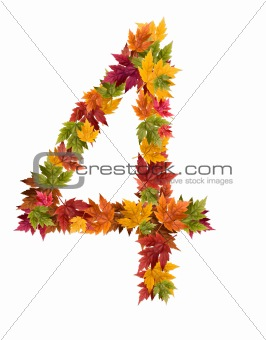 The lnumber 4 made from autumn maple tree leaves