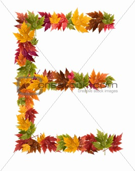 The letter E made from autumn maple tree leaves