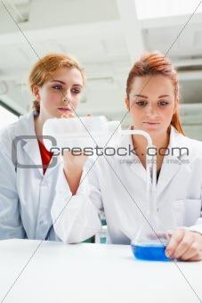 Portrait of scientists doing an experiment