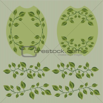 Olive branches with leafs set