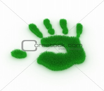 Hand print from grass