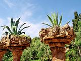 Natural Stone Planters.