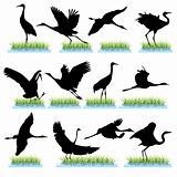 Cranes silhouettes set