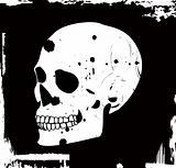 grunge vector skull