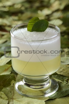 Peruvian Cocktail Called Coca Sour
