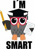 a smart owl