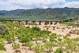 citrous garden and bridge in dry riverbed