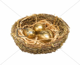 Four golden hen's eggs in the grassy nest isolated on white